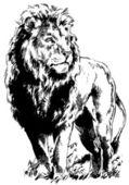 Lion king — Stock Vector