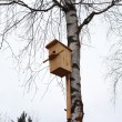 Bird house — Stockfoto #9944486