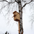 Bird house — Stock Photo #9944486