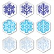 Snowflakes. Vector illustration. - Stockvectorbeeld