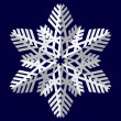 Snowflakes. Vector illustration. — Stockvectorbeeld