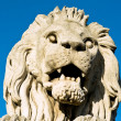 The stone lion of the Chain Bridge in Budapest - Stock Photo