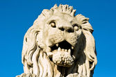 The stone lion of the Chain Bridge in Budapest — Foto Stock