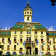 City Hall of Szeged — Foto de Stock