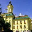 Stock Photo: The City Hall of Szeged