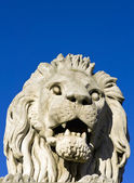 The stone lion of the Chain Bridge in Budapest — Stockfoto