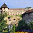 Buda castle — Stock Photo