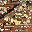 Roofs of Florence — Stock Photo #9606041