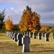 Stock Photo: Military cemetery in Budaors