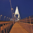 The new bridge called Megyeri at Budapet — Stok fotoğraf
