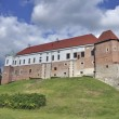The castle of Sandomierz — Foto de Stock