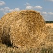 Straw ricks on field — Stock Photo #9945049
