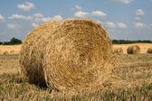 Straw ricks on the field — Stock Photo