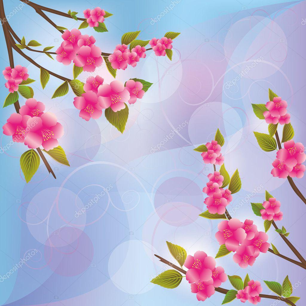 Sfondo con fiore di sakura ciliegio giapponese for Sakura albero