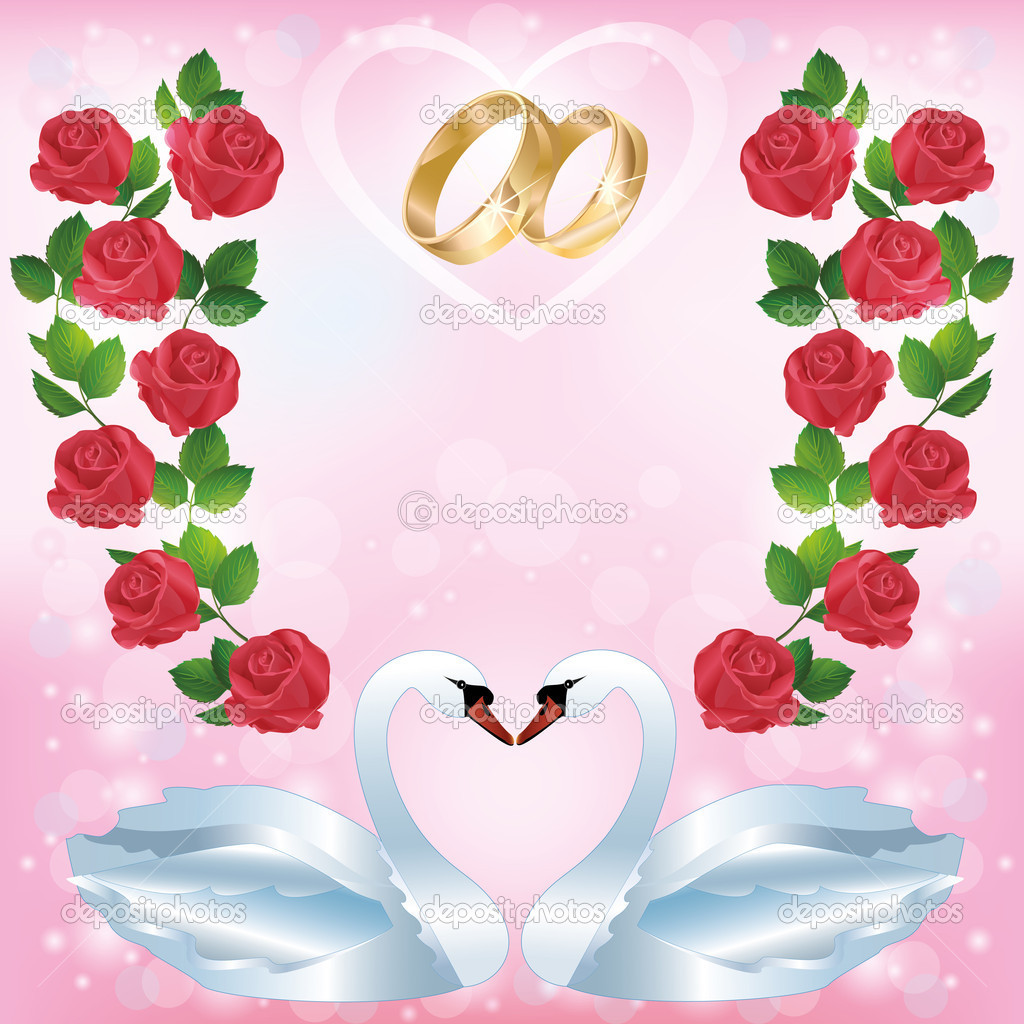 Wedding greeting or invitation card with pair of white swans, wedding rings, decorated ornament of red roses. Place for text. Vector illustration — Stock Vector #10525350