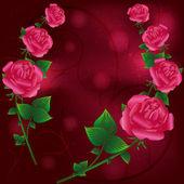 Greeting card with roses — Stockvektor