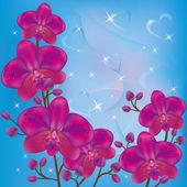 Parlak arka plan orkide — Stok Vektör