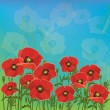 Floral background with red poppies — Stock Photo