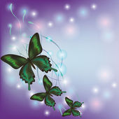 Light background with butterflies — Stock Vector