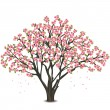 Stock Vector: Japanese cherry tree blossom over white