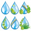 Set of water drops with leaves — Stock Vector