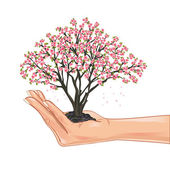 Hand holding a cherry tree blossom — Stock Vector
