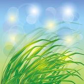 Fondo de primavera con hierba verde fresca — Vector de stock