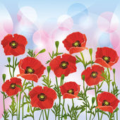 Floral background with red poppies — Stock Vector