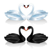 Set of white and black swans — Stock Vector