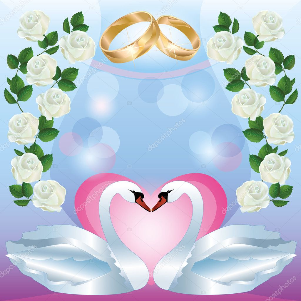 Wedding greeting or invitation card with two white swans, wedding rings, decorated white roses. Vector illustration — Stock Vector #9768767