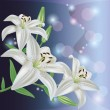 Greeting or invitation card with lily flower, vector — Stok Vektör