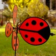 Sweet  ladybird weathercock in the green grass garden — Stock Photo