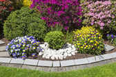Landscaped flower garden — Foto de Stock