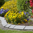 Stock Photo: Yellow viola flowers blooming in garden