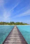 Paradise island – vertical shot — Stock Photo