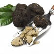 Truffles — Stock Photo #10693566