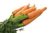 Färska morötter — Stockfoto
