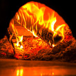 Fire in pizzoven — Stock Photo #8538033