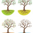 Four season tree — Stock Vector