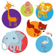 Cartoon wild animals — Stock Vector #8588666