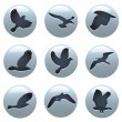 Bird icon set — Stock Vector