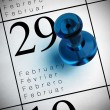 Stock Photo: Leap year february 29th