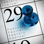Anno bisestile il 29 febbraio — Foto Stock