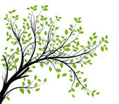 Vector - decorative branch silhouette — Stock Photo