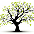 Decorative tree and green leaves, vector — Stock Photo #9177994