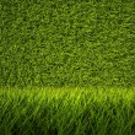 3d green grass texture, background — Stock Photo #10195561