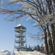 Snowy observation tower in winter — Foto de stock #8011379