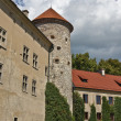 Medieval tower and old castle, Pieskowa Skala — Stock Photo