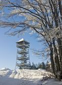 Snowy observation tower in winter — Stock Photo