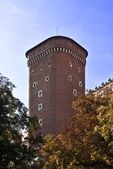Castle tower, Wawel Cracow — Stock Photo